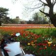 和田公園にて